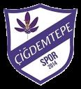 çiğdemtepe spor logo